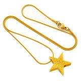 Pendente da colar do Urn da cremação da estrela do aço inoxidável para o Keepsake memorável