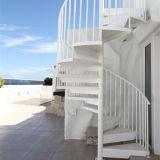El precio de la escalera en espiral de acero inoxidable cubierta de colores de la escalera en espiral