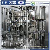 Fabricante profesional de la máquina de llenado del vaso de agua automático