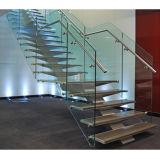Escadas de aço interiores do projeto da escadaria