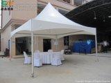 خارجيّة [بغدا] حزب ظلة خيمة لأنّ عمليّة بيع