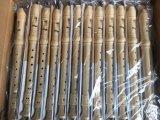 직업적인 급료 상아빛 색깔 플라스틱 소프라노 기록병 플루트