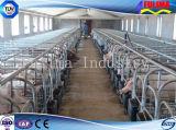 Гальванизированные панели загородки скотин лошади (FLM-CP-011)
