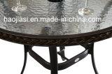 옥외 /Rattan/정원은/안뜰/호텔 가구 등나무 의자 & 테이블 놓았다 (HS 1025C&HS 6080BDT)