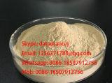 Type amylase-alpha thermostable de préparations enzymatiques