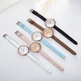 Reloj de la correa de cuero del reloj de señoras con Japón Movemnent (Wy-110B)