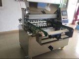 Edelstahl-Biskuite, die Maschine mit guter Qualität herstellen