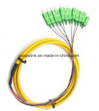 La fibra óptica de 12 núcleos enlazados en forma de espiral de fibra óptica para la transmisión de datos/Red.