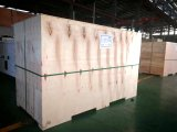 De eerste Reserve300kw 375kVA Cummins Diesel Genset van de Output 270kw 338kVA voor Filippijnse Markt
