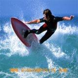 Fibre de verre ordinaire de tissu de la fibre de verre 210GSM pour la planche de surfing