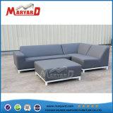 Insieme del sofà della mobilia della casa del giardino di disegno semplice
