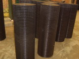 Hot Dipped Galvanized Welded Wire Mesh by roll