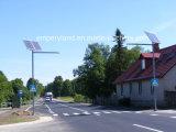 60W zonneStraatlantaarn 3 Jaar van de Tijd van de Garantie Waterdichte IP68