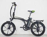 판매 (FR-TDN16Z)를 위한 전기 자전거를 접히는 마그네슘 바퀴