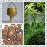 Myrrhe-Auszug /Commiphora Myrrha Engl./Myrrha /Gum Myrrhe
