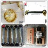 pièces de rechange Sinotruk HOWO Auto tuyau ondulé (WG9112540001)