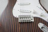 carrocería sólida de la guitarra eléctrica del Zebrawood del último final del lustre 2017