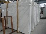 El mármol blanco oriental para la vanidad remata los azulejos de suelo (YY-VOW)