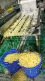 L'eau de laitue de vibration effaçant la machine assèchent des fruits et légumes Dehydrater de convoyeur de dessiccateur de rotation de machine