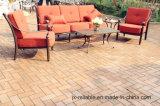 كلاسيكيّة حديقة ثرثرة أريكة أثاث لازم محدّد (وسادة أحمر)