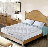 2017년 가구 - 동향 봄 침대 매트리스