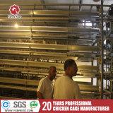 Granja Malasia Equipo para avicultura Equipo de la jaula de pollo de la fábrica de China