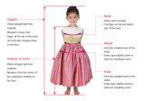 Robes pourprées de petite fille d'usager de bille d'organza