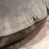 تعقّب سرير صغيرة لأنّ صغيرة محبوبة حصار يحشو [بت دوغ] أسرّة كلب فراش