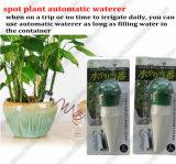 Unità d'innaffiatura della pianta di ceramica automatica, pianta Waterer