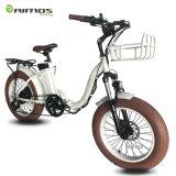 Vente chaude Amérique et montagne 48V 750W 20inch du marché de l'Europe pliant le vélo électrique de gros pneu à vendre