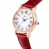 Montre matérielle de caisse de montre/alliage d'acier inoxydable avec la montre de qualité de mouvement du Japon de cuir véritable