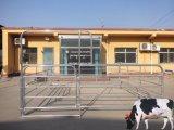 12 футов долго круглого типа крупного рогатого скота во дворе панель для евро рынка (XMR99)