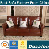 Sofa en cuir de l'Amérique, sofa sectionnel, sofa d'Amazone (806)