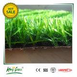良質の庭の人工的な草のための美しい景色の草