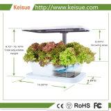 Agregado Keisue Fazenda Micro LED cor branca
