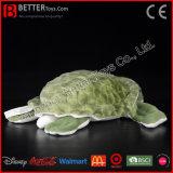 De levensechte Zachte Speelgoed Gevulde Schildpad van het Overzeese Dierlijke Stuk speelgoed van de Pluche voor Jonge geitjes