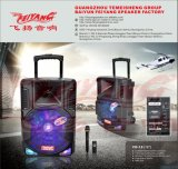 Haut-parleur mobile Fg-12 de karaoke de Bluetooth d'orateur de chariot