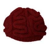 Hand Knitted Gehirn-HutBeanie, handgemachte Winter-Schutzkappe
