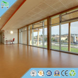 建物の装飾材料の音響パネルの体育館の天井の壁パネル
