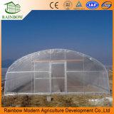 플레스틱 필름 단 하나 경간 농업 온실