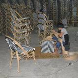 Место Председателя в саду ресторан Кафе алюминиевый стул ротанга (SP-OC359)