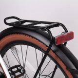 Stadt 250W Ebike elektrisches Fahrrad mit übergrossen Reifen