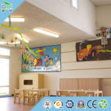 Потолок охраны окружающей среды нутряной и внешний украшения