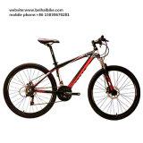 Venta caliente bici de montaña adulta de 26 pulgadas