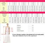 Silberner Partei-Abschlussball bekleidet Spitze-Tulle-Brautjunfer-Abend-Kleid T2017