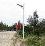 Integriertes Solarstraßenlaterne(30W)