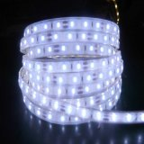 Alto brillo LED de 60 14,4 W/M tiras de LED flexible