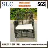 Самая лучшая продавая напольная мебель ротанга (SC-B8960)
