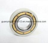 격리되는 고품질 Insocoat 방위 6317/C3vl0241를 품기