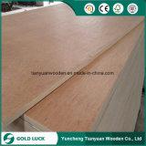 Bintangor/Okoume hizo frente a la madera contrachapada comercial para los muebles (1220X2440m m)